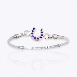 Bangle, horseshoe with small clear cubic zirconia, amethyst cubic zirconia, or sapphire glass stone.